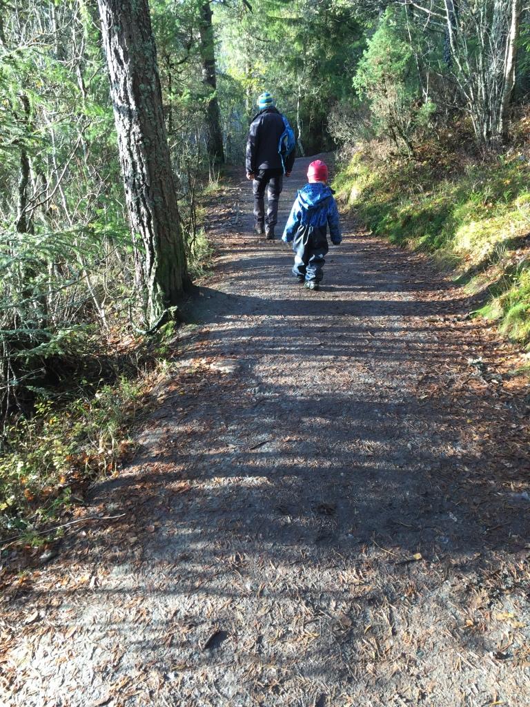 Spaziergang um den See. Der Regen hat dann doch noch aufgehört. Es riecht nach nassem Wald und Herbst.