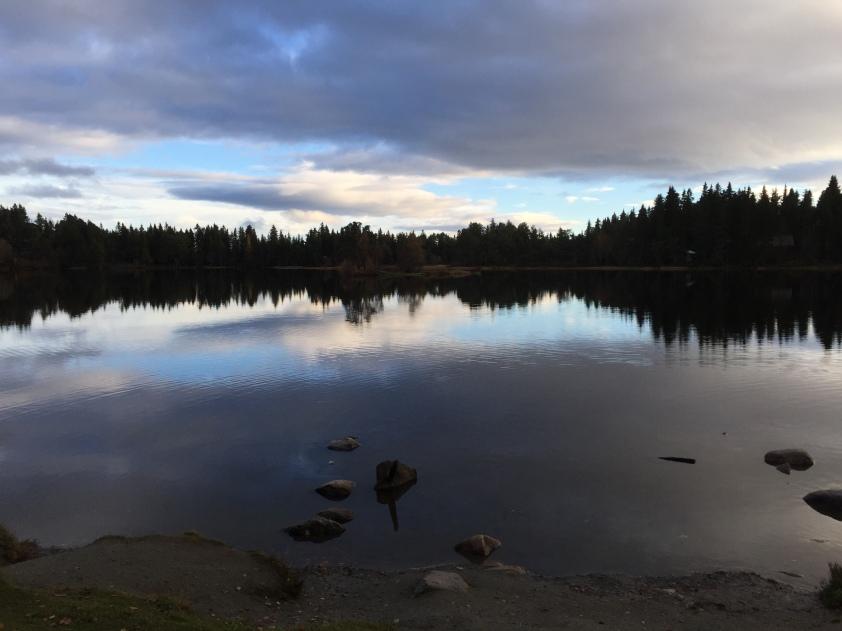 Oh pornöse norwegische Natur.